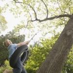 Dreng gynger i træ